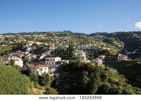 View over the vineyards of the Madeira Wine Company Estreito de Camara de Lobos Madeira Portugal