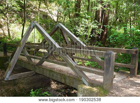 A-frame bridge across stream at redwood grove in northern California state preserve.