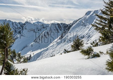 Scenic view of snowy mountainous Alpine landscape with trees in foreground