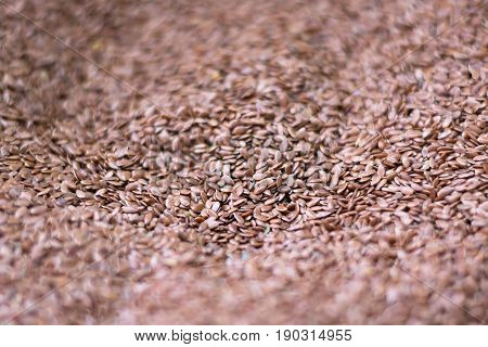 Linseed in a market . Linum usitatissimum. Useful as a background.