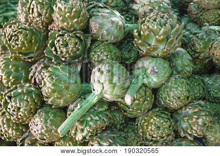Fresh artichoke at the village market. Large fruit of the artichoke