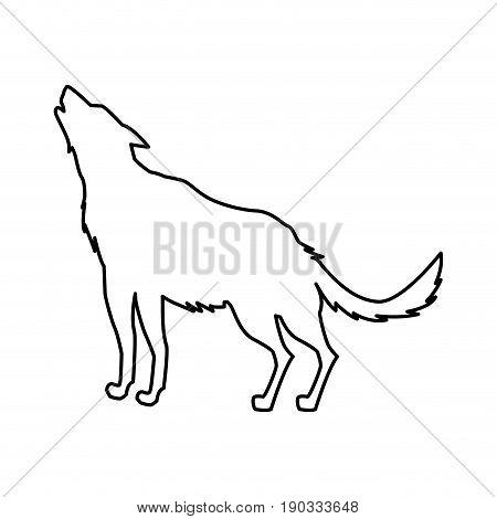 wolf animal forest wild life image vector illustration