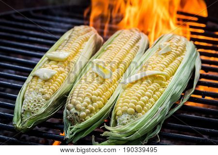 Fresh Corncob With Butter And Salt On Grill