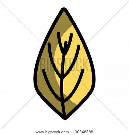 natural leaf to ecology preservation icon vector illustration