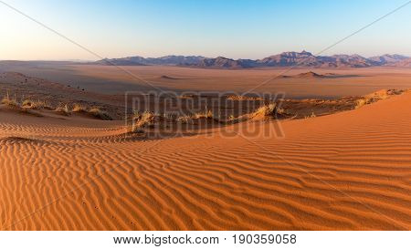 Landscape view of the Namib Rand Nature Reserve in Namibia Africa