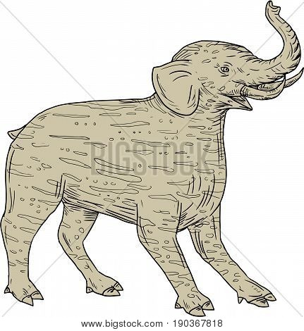 Drawing sketch style illustration of a Baku a Chinese and Japanese Folklore tapir-like creature with elephantine tusks and trunk and with striped fur viewed from the side set on isolated white background.