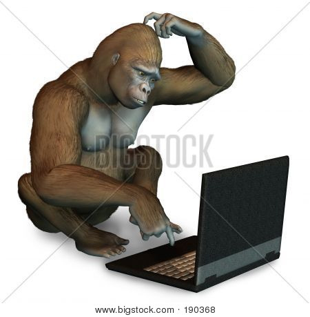 Perplexed Gorilla With Laptop Computer