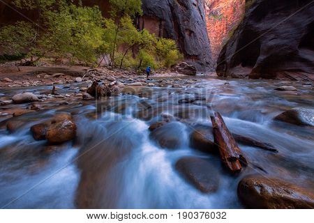 The Narrows And Virgin River In Zion National Park Zion, Usa