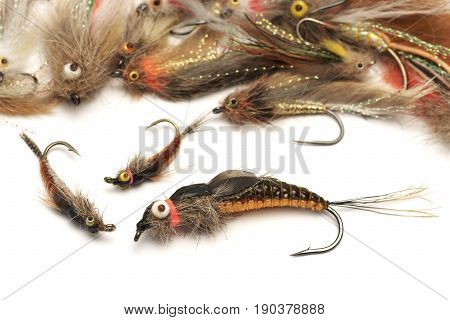 Fly fishing bait , on a white background