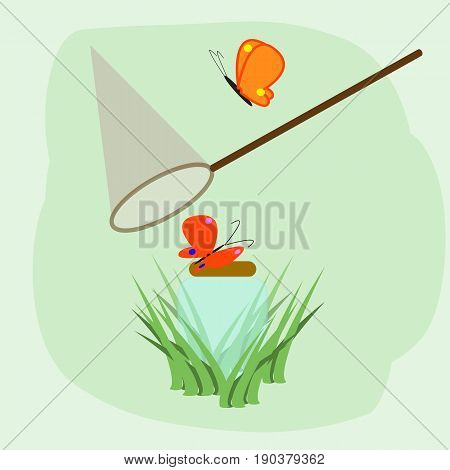 Cartoon illustration with colorful flying butterflies net and glass jar in the grass on the green background. Spring or summer image for design.