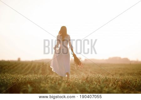 Young woman in long white lace dress on cornfield. She goes barefoot with bouquet of wild flowers in her hands. Back view.