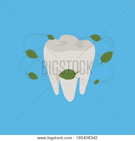 healthy teeth fresh breath mint leaves aroma of toothpaste flat design vector image