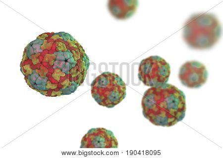 Saliviruses isolated on white background, a novel genus of viruses from Picornaviridae family which causes gastroenteritis. 3D illustration