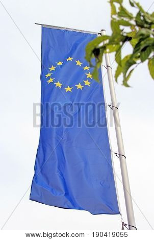 European flag with mast green leaves in foreground
