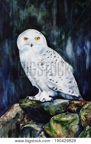 white snowy owl in the forest - watercolor wildlife painting with detailed paper texture