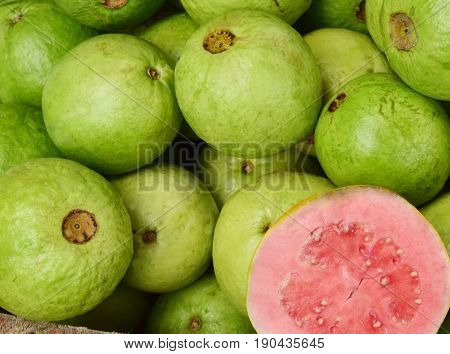 Guava (Psidium guajava) or often called guava, guava Siki and guava is a tropical plant originating from Brazil