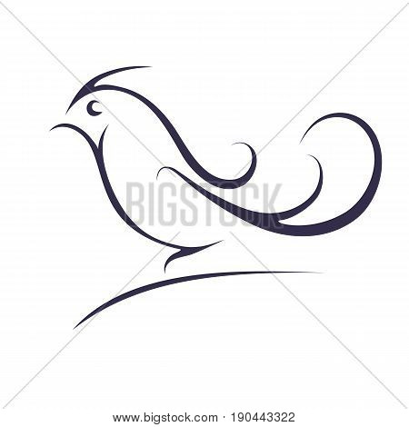 Birdie on a white background. Contour of a bird. vector illustration