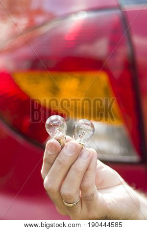 The mechanics hands holding single-filament or dual-filament automotive bulbs