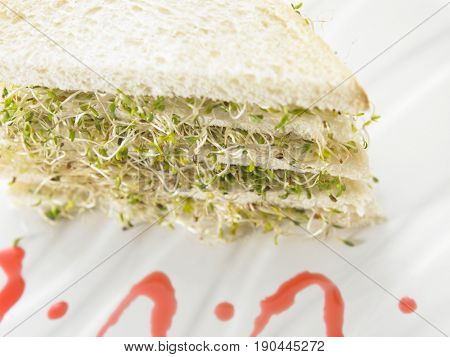 top view of alfalfa sandwich
