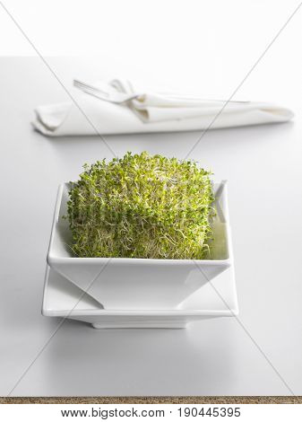 Alfalfa sprouts on plate with white napkin