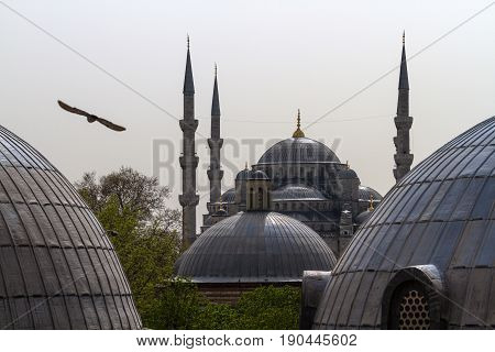 Istanbul, The Aya-sofia Mosque