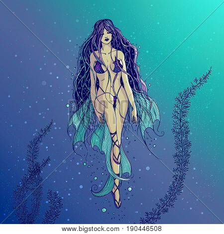 Vector illustration of a swimming sea mermaid with long beautiful hair. The girl water-nymph with the fins and the swimsuit squama enjoying the water element. Freehand drawing