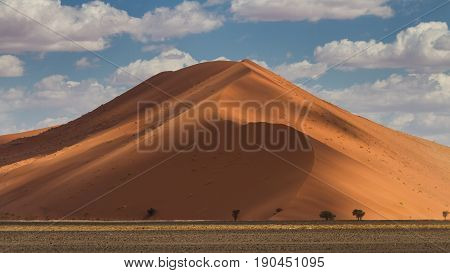 Dune 45 at the Sossusvlei National Park Namibia Africa