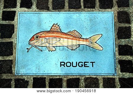Frejus, Provence, France - August 18 2016: Decorative Paving Stone On The Quayside, In Port Frejus,