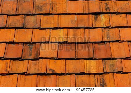 clean roof tiles background texture in regular rows