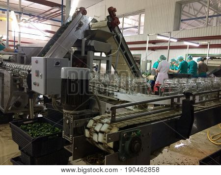 Working process of the production of cucumbers on cannery. Pasteurization of cans. Movement on the conveyor.