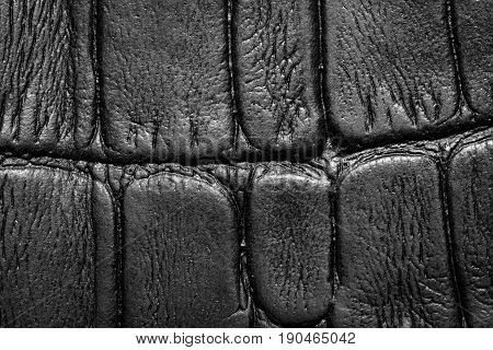 Leather, Leather Texture, Kust, Artificial Leather, Texture