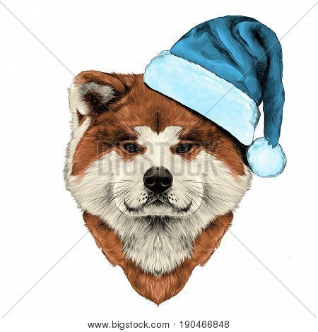muzzle dog breed Akita inu in Santa hat full face looking forward symmetrically sketch vector graphics color picture