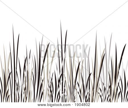 Black Brown White Grass Illustration