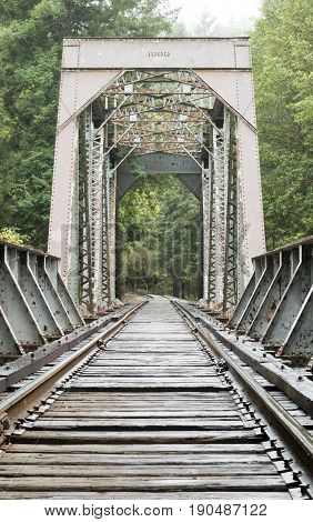 Old Train Trestle Bridge. Henry Cowell Redwoods State Park, California, USA. poster