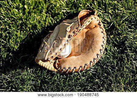 Baseball and glove against green grass in the summer sun