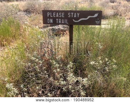 Brown trail sign surrounded by tall grass and white wildflowers with a white rattlesnake symbol and the words, Please Stay On Trail, printed in white letters