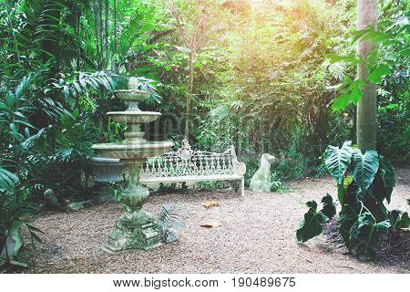 English and Tropical garden with vintage fountain