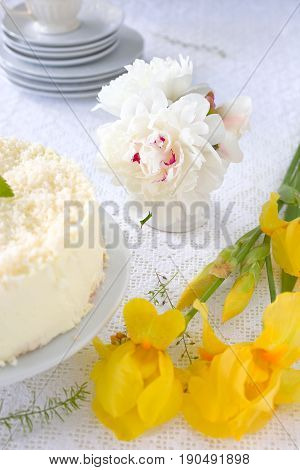 Peony and gelatin cheesecake with coconut flakes on white.