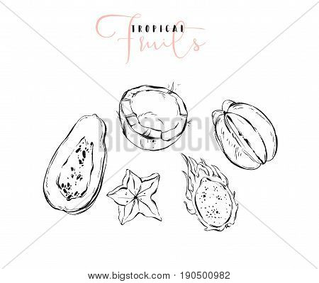 Hand drawn vector graphic line exotic fruits sketch illustrations collection set with coconut, papaya, dragon fruit and carambola isolated on white background.Cook book design elements, menu, shop, sign