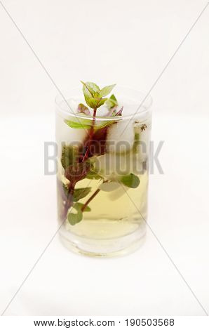 Mint Drink Kentucky derby in a glass goblet on a light background.