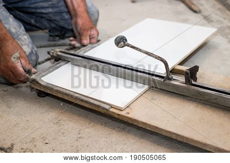 Ceramist Cuts Tile Cutter Tile, Cut To An Appropriate Dimension, White Tiles, Ceramics
