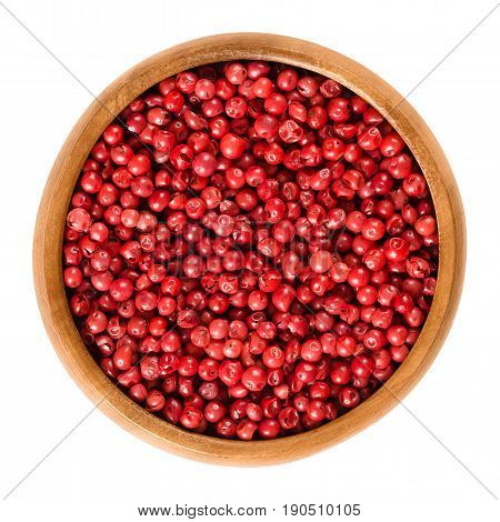 Pink pepper in wooden bowl. Peppercorns, dried berries, spice. Schinus terebinthifolia, Brazilian pepper, aroeira, rose pepper, wilelaiki, Christmasberry. Isolated macro food photo close up over white