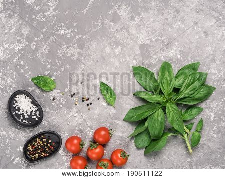 Cooking or food background. Fresh basil, tomatoes, salt and mixe pepper on gray concrete background. Top view or flat lay Copy space.