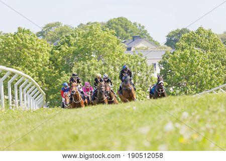 STOCKHOLM SWEDEN - JUNE 06 2017: Fight between jockeys riding arabian race horses in a trees in the background at Nationaldags Galoppen at Gardet. June 6 2017 in Stockholm Sweden