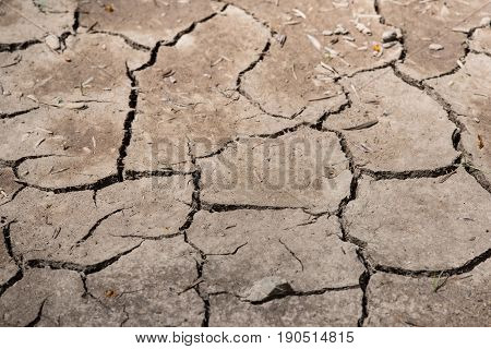 dry land cracked land as a result of summer drought globa clima concept