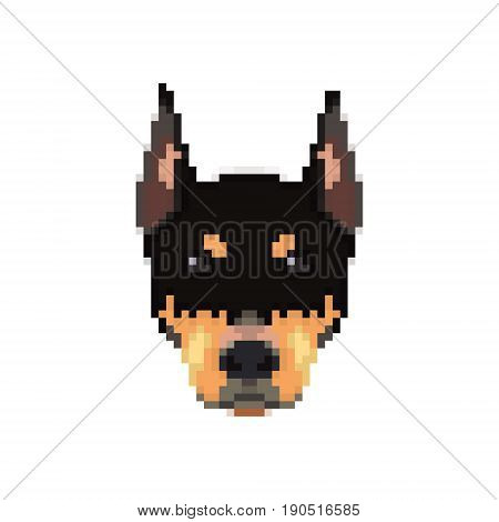 Doberman head in pixel art style. Dog icon. Vector illustration.