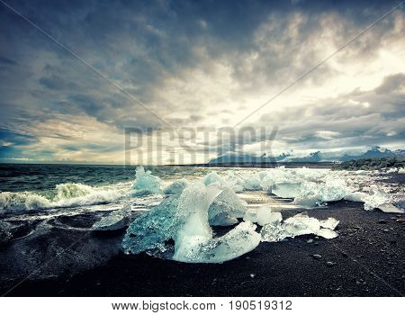 Ice on the black volcabic sand beach in Iceland