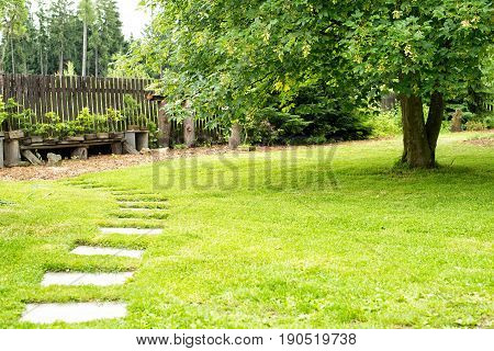 Garden Landscape with path and fresh grass