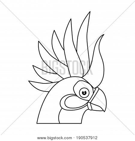 cockatoo bird icon over white background vector illustration