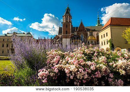 Summer Wawel cathedral on Wawel Hill in Krakow, Poland